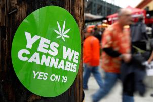La Chambre des représentants d'Uruguay a approuvé par 50 voix contre 46 un projet de loi visant à légaliser et à réglementer la production, la distribution et la vente de marijuana.